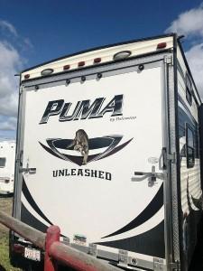 2015 Palomino Puma Unleashed 351THSS Toy Hauler