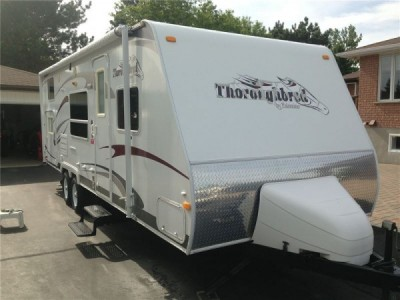 2008 Palomino  Thoroughbred T26BHS